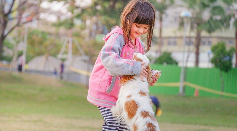 crianças-cães-carinho-amor