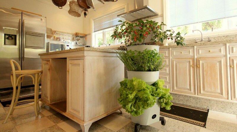 horta-vertical-reciclagem