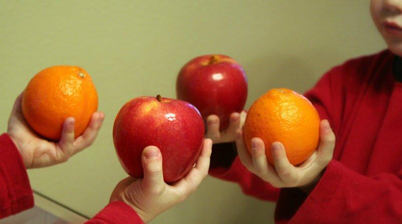 Mãe vegetariana como criar filhos vegetarianos - Clube das Comadres