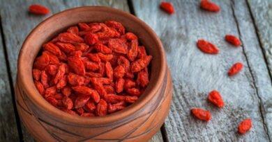 goji berry-um-super-alimento-que-devemos-comer-clube-das-comadres