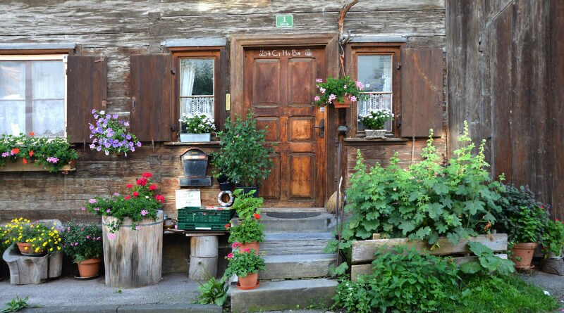 Vaso de sete ervas para proteger sua casa - Clube das Comadres