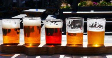 Cervejas artesanais vire um expert no assunto - Clube das Comadres