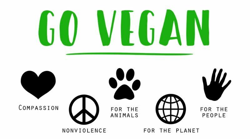Vegano - vegetariano - ovolactovegetariano