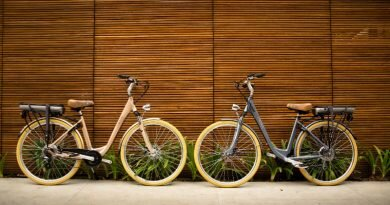 bicicleta elétrica - sustentável - fitness