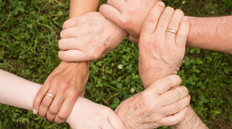 Paz em família - eliana barbosa - harmonia