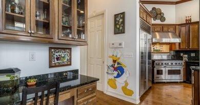 Casa decorada com itens de parques da Disney